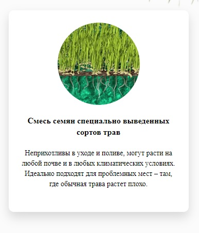 жидкий газон Арсеньев